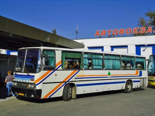 Автобусы Рязань — аэропорт